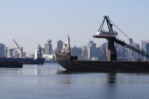 """Протести у Канаді спричинили """"чергу"""" з 40 суден біля порту Ванкувера"""
