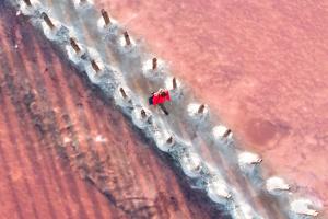 """""""На Рожевій планеті"""": знімки одеського фотографа увійшли до шорт-листа престижного конкурсу"""