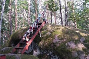 Поліський Стоунхендж і дикий мед: Олевська ОТГ розвиває екскурсійний туризм