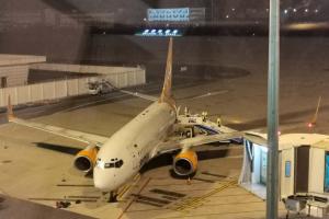 Евакуація з Китаю: літак з українцями та іноземцями вилетів з Уханя