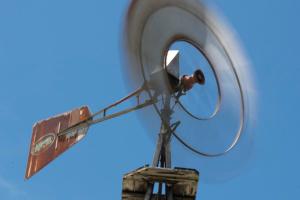 Синоптики объявили штормовое предупреждение из-за сильного ветра