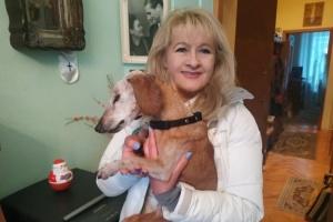 Померла найстаріша в Україні собака Нора — таксі було майже 20 років