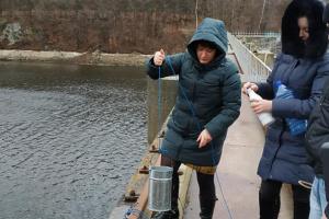 Рівень водосховища, яке забезпечує Житомир водою, упав на два метри