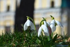 В Україну на кілька днів завітають мокрий сніг та дощі - синоптик