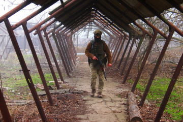 Сeasefire observed along entire contact line in Donbas