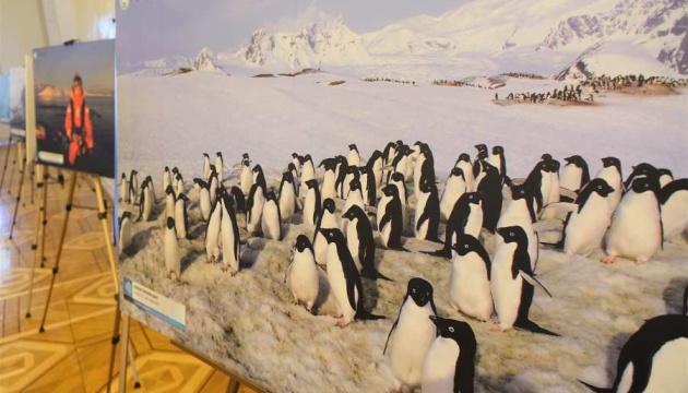 У Раді відкрилася виставка до 200-річчя відкриття Антарктиди