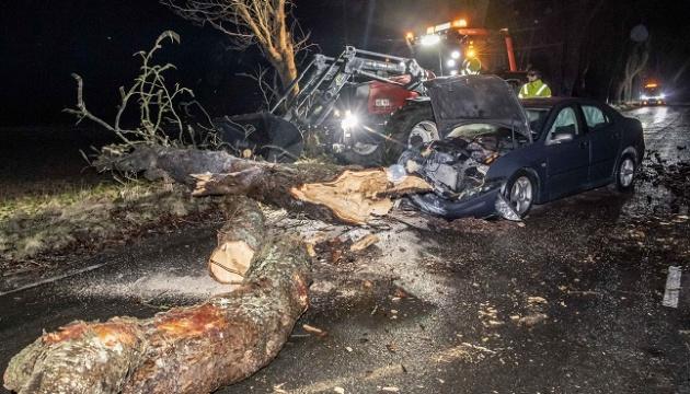 У Швеції понад 15 тисяч осіб залишилися без світла через шторм