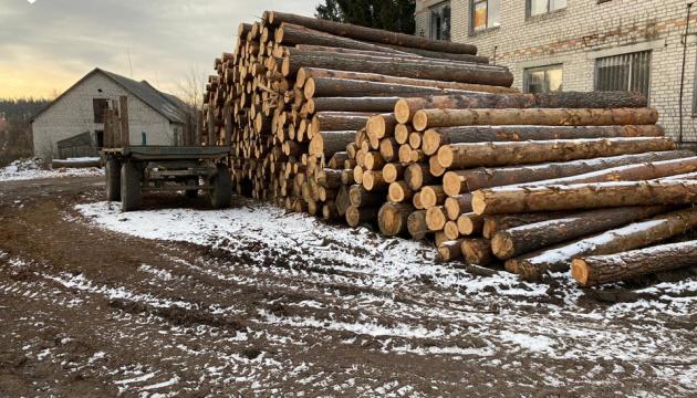 ДБР проводить обшуки у Держлісагентстві та лісгоспах Житомирщини