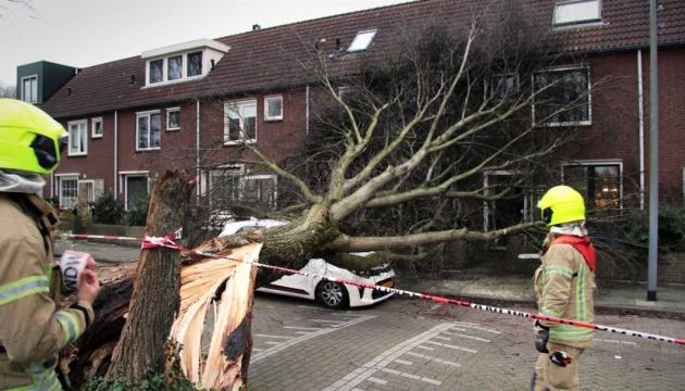 Шторм Ciara у Нідерландах валить дерева і зриває дахи