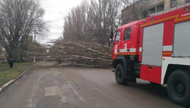 Вітер повалив щонайменше 60 дерев у Херсоні