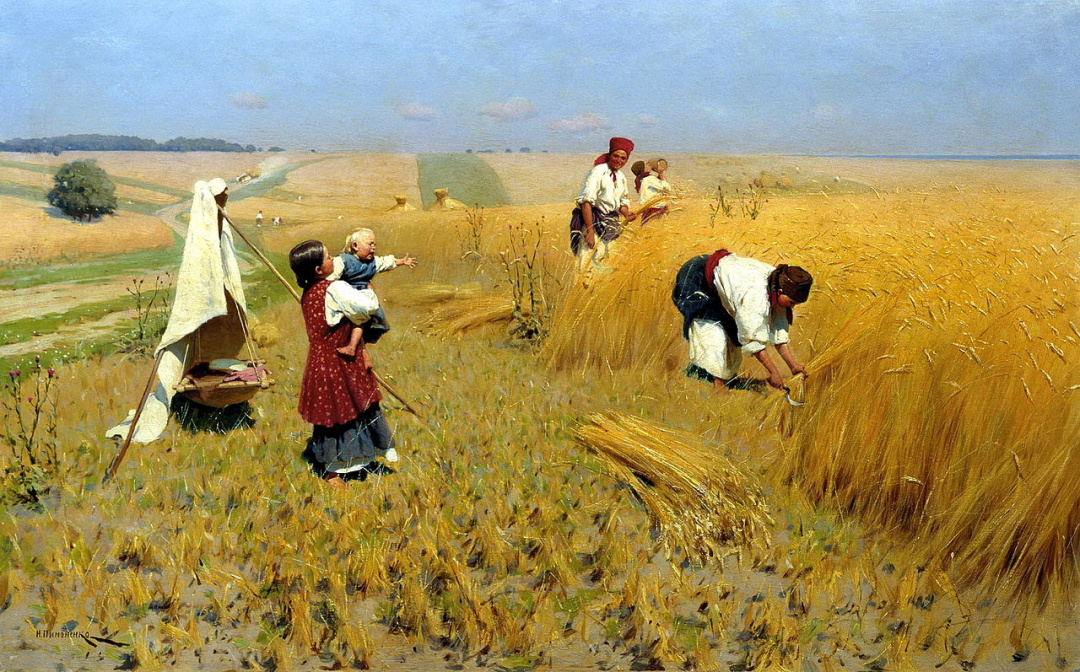 Жнива в Україні, 1896 р.