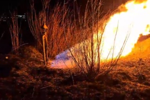 """Біля аеропорту """"Львів"""" через паліїв сухої трави загорівся газопровід"""