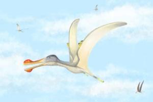 Учені виявили три нових види птерозаврів у Сахарі