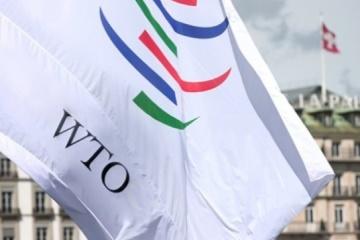 Коронакриза: у СОТ пропонують заходи для відновлення світової економіки