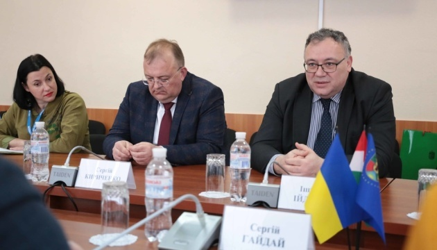 Luhansk governor, Hungarian ambassador discuss prospective projects in region