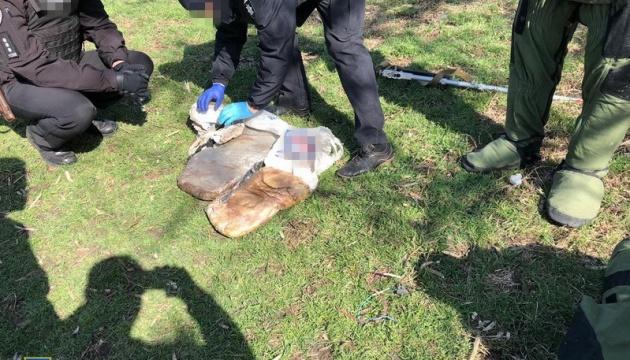 На околицях Слов'янська знайшли схрон із 30 кг пластиду