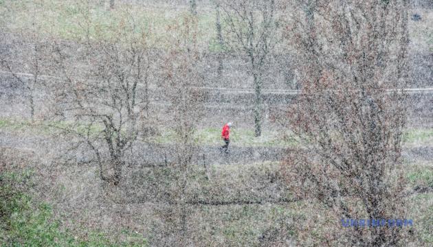 Мисливці за вірусами, сесія на парковці та березневий снігопад