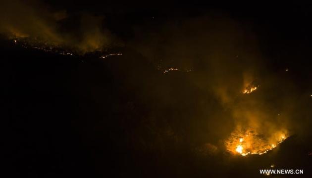 У Китаї 19 осіб загинули під час гасіння лісової пожежі
