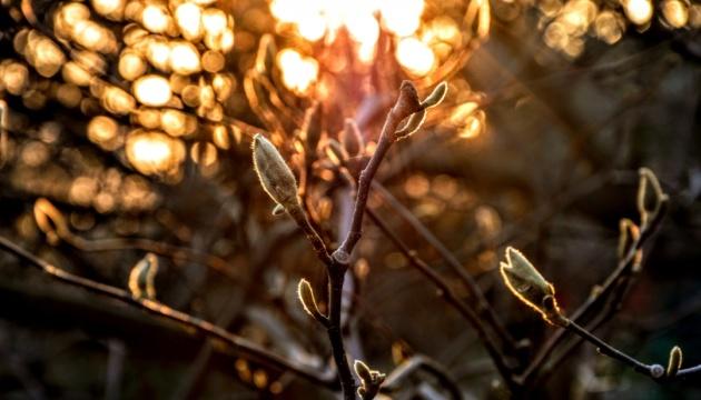 В Украину пришла теплая погода - на днях прогреет до +21°