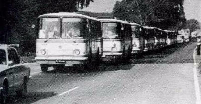 Евакуйовувалися організовано автобусами