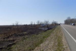 Правоохоронці розслідують обставини масштабної пожежі в дельті Дністра