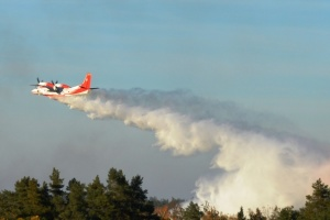 На Чернігівщині лісову пожежу гасять із літаків