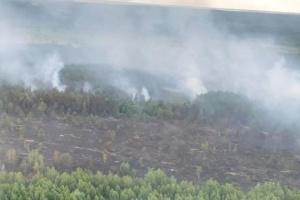 Пожежа в Чорнобильській зоні охопила майже 100 гектарів