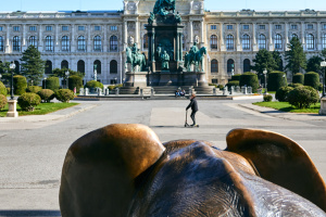 В Австрии 14 апреля могут открыться первые магазины, с мая - все остальные