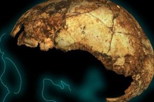 В Африці знайшли найдавніший череп предка Homo sapiens