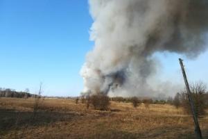 На Житомирщині локалізували лісові пожежі площею понад 200 гектарів