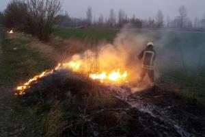 На Київщині згоріло понад 196 га сухостою
