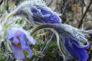 Від 0° до +16°: Україну на вихідні чекають температурні «гойдалки»