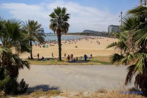 О безопасности туристов на курортах Испании позаботятся 40 тысяч полицейских