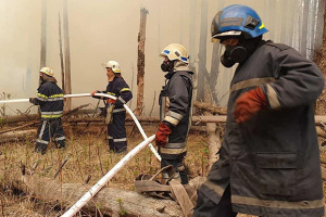 Fires in Chornobyl zone, Zhytomyr region contained