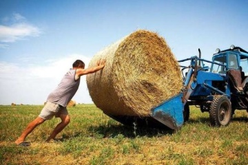 Economy Ministry intends to increase state support for farmers