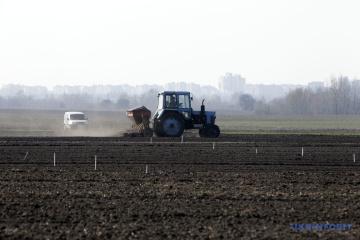 Na Ukrainie zakończono siew pszenicy jarej, jęczmienia, buraków i grochu