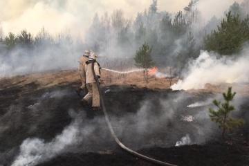 La Garde nationale de l'Ukraine commence une opération contre-sabotage pour enquêter sur les feux de forêt