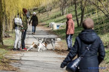 Berater Selenskyjs teilt mit, wann beginnt Ukraine, Quarantäne zu beenden