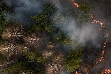 Les feux de forêt dans la région de Jytomyr sont les plus dévastateurs depuis 1996