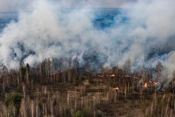 Avakov: Arranca una operación anti-sabotaje de la Guardia Nacional por los incendios forestales