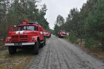 Brände bei Tschorbobyl-Sperrzone: Löscharbeiten dauern an, Strahlungsgrenzwerte nicht überschritten