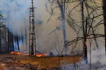Les tourbières brûlent toujours dans la zone de Tchornobyl