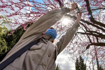 【写真ルポ】ウクライナ全国の防疫措置期間の様子