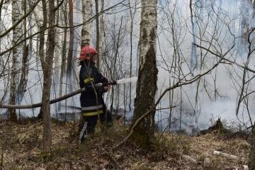 Brände in der Oblast Schytomyr: Löscharbeiten dauern an