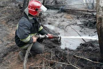 Рятувальники продовжують гасити осередки тління трави під Чорнобилем та на Житомирщині