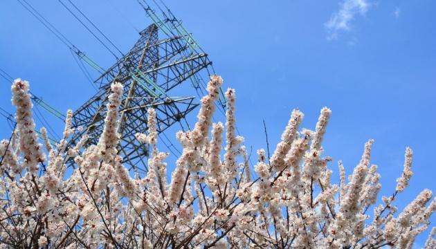 Енергоатом: критична ситуація на енергоринку вимагає негайних і рішучих дій