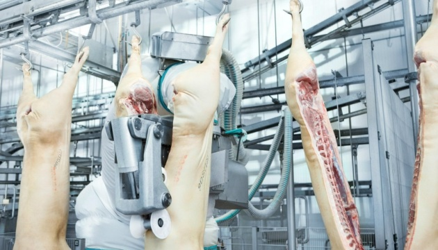 Consolidation of the meat industry during a crisis will solve a number of problems