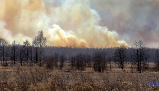 Пожежі в екосистемах: у Кабміні хочуть посилити покарання для паліїв
