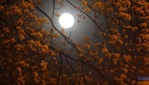 Фазы Луны влияют на продолжительность и качество сна