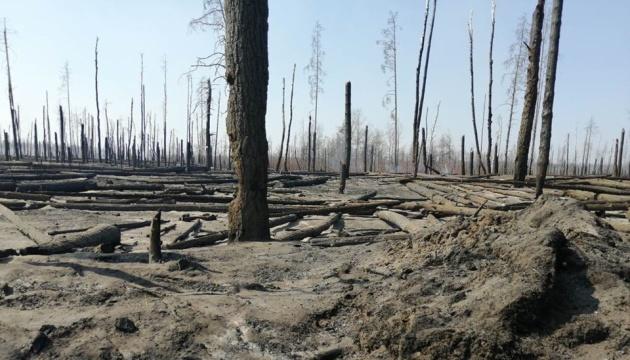 Збитки від пожежі у Чорнобильській зоні попередньо оцінюють у десятки мільйонів